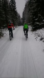 Desembertur på skogsbilveier med bra selskap